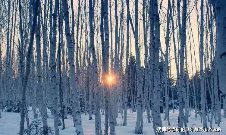 冰雪王国的呼伦贝尔,您不需要一份呼伦贝尔冬季旅游攻略吗?
