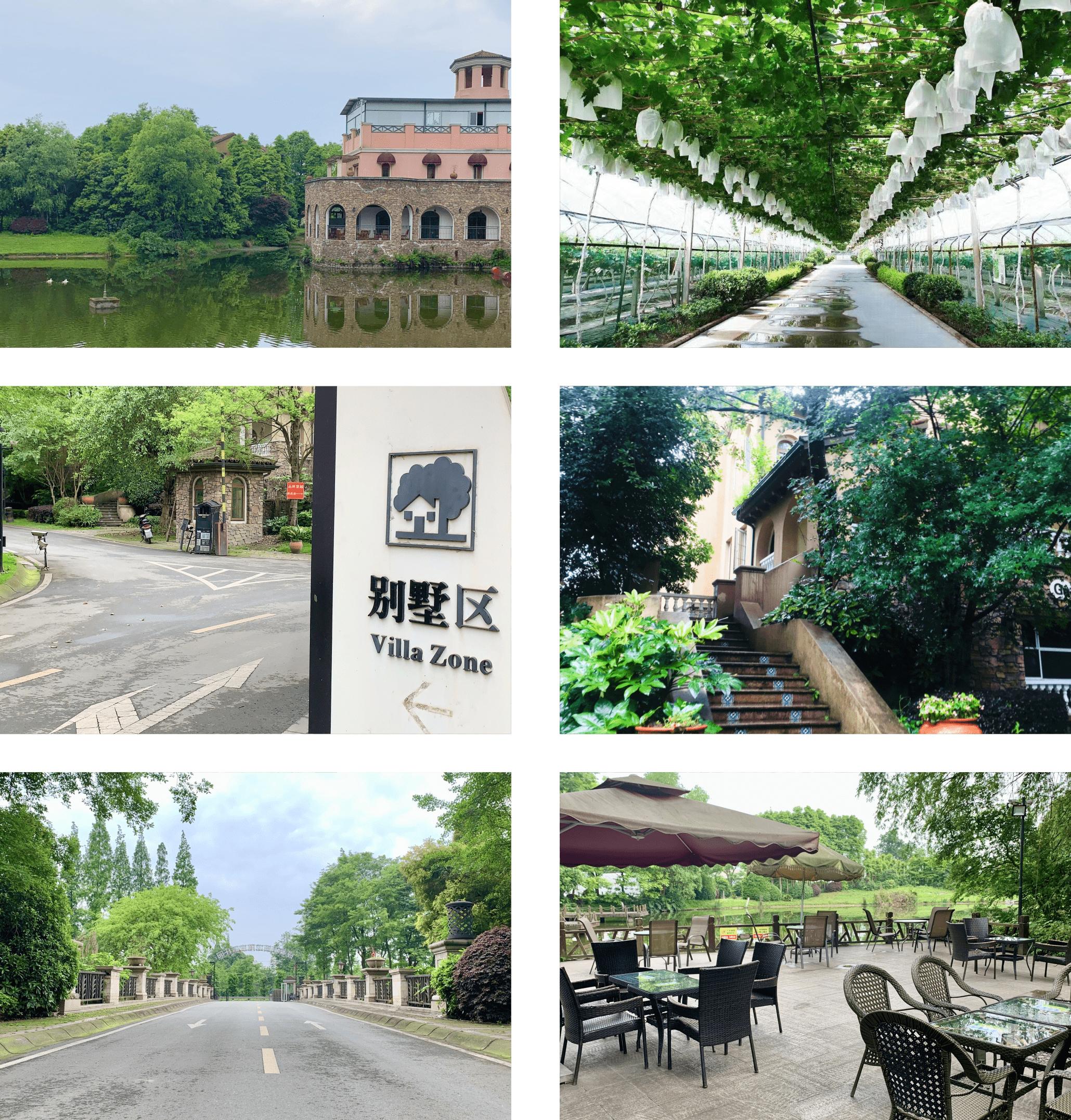 成都周边企业拓展聚会好去处尽在郫县西镇葡萄庄园!