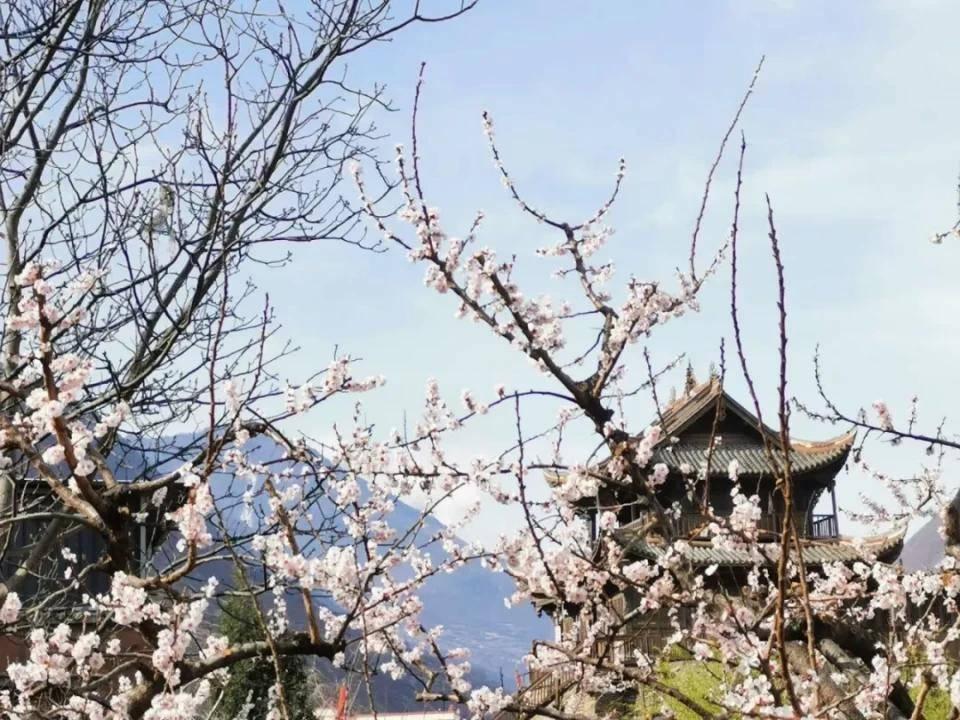 又双叒叕上榜!阿坝州这4个村落被评为四川最美!