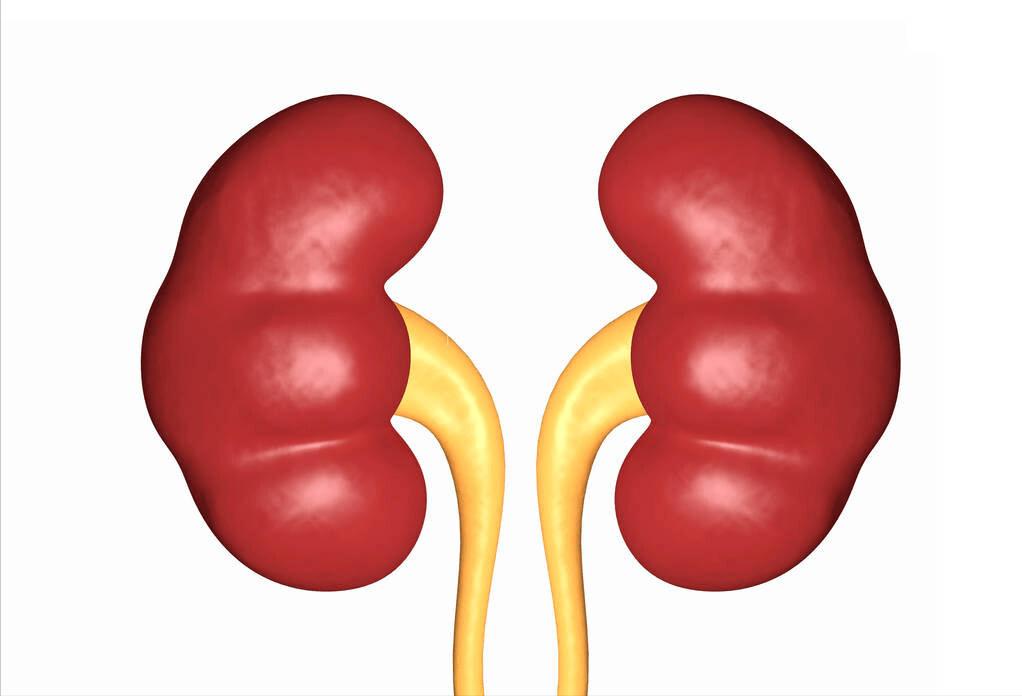 原創             痛風患者不能吃降尿酸藥,否則會傷腎?醫生怒斥:謠言太坑人了
