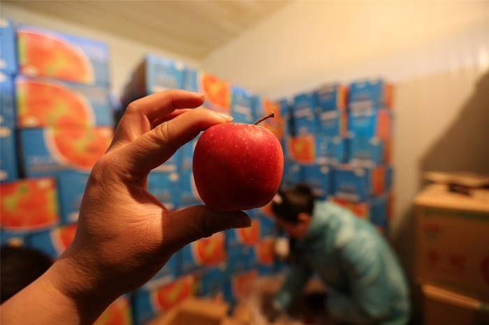 蒙古80%水果蔬菜从中国进口,蒙古人为什么自己不种菜?