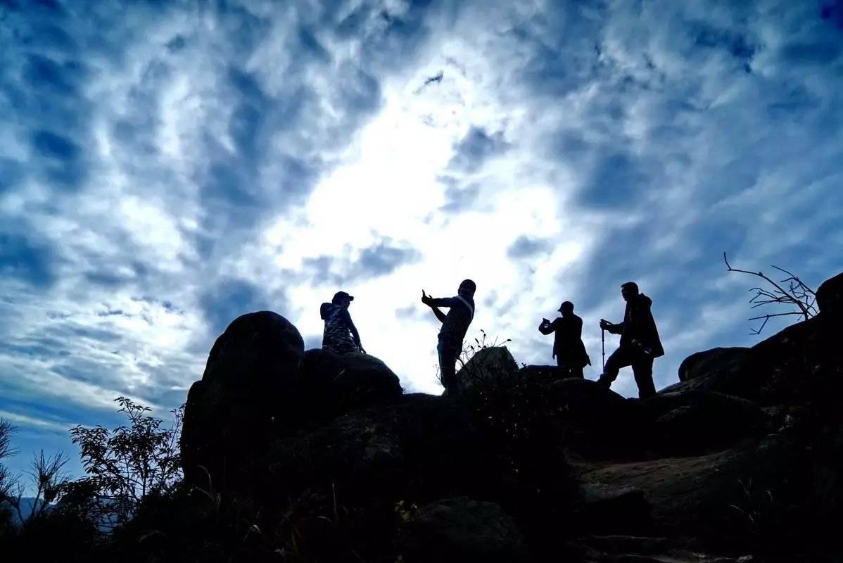 原创             温州早该火的小众旅游地,一到春天花开遍野,四月迎来颜值巅峰