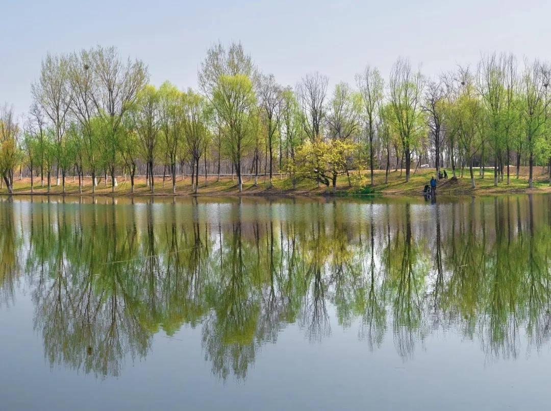 陶然其中 ·鱼鸟河公园