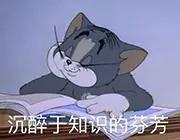 因为热爱动漫去日本留学的年轻人