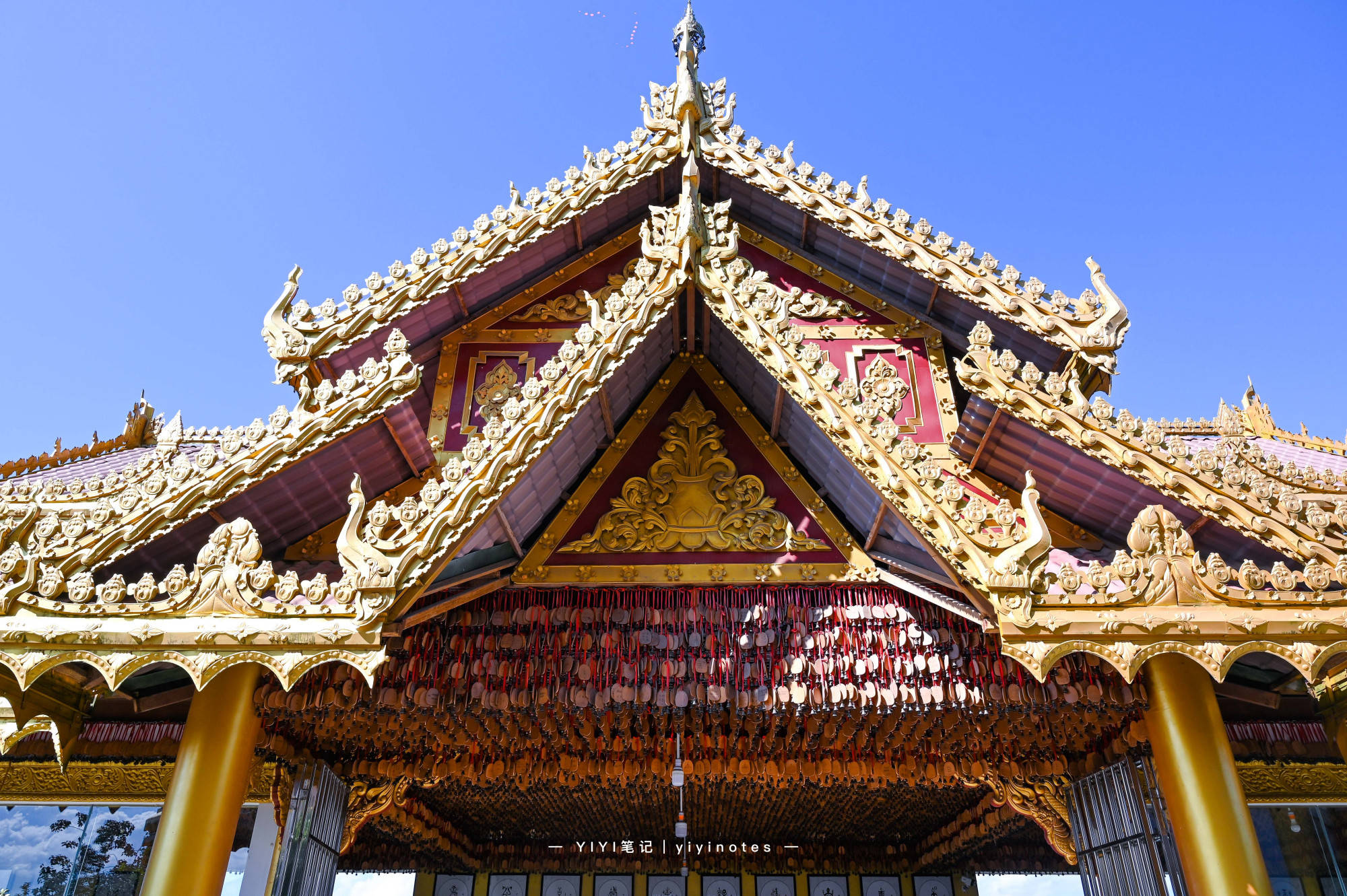 云南必打卡的勐焕大金塔,景区内仿佛小型热带植物园,假装在泰国
