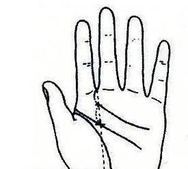 """秘传手相古相法精解:手相""""感情线""""、详细图文解析、值得收藏!  第4张"""
