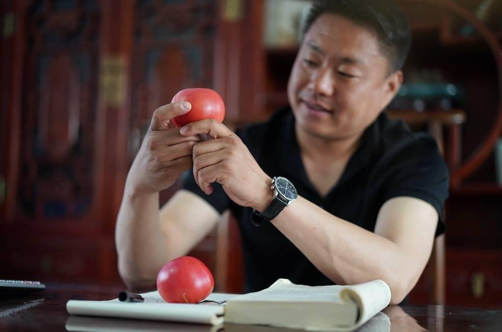 """五一乡村游:投资农业赚钱吗?他笑着说""""我种的西红柿可好吃了"""""""