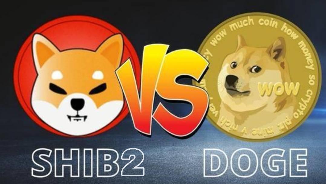 SHIB2一场SHIBa lnu生态币的革命!从0到1的过程就是社会底层跨越阶层的路程!