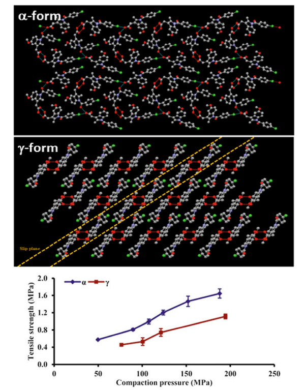 藥物固體形態篩選新思路|實驗+預測藥物晶型篩選