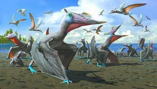 新疆发现湖翼龙群居足迹化石