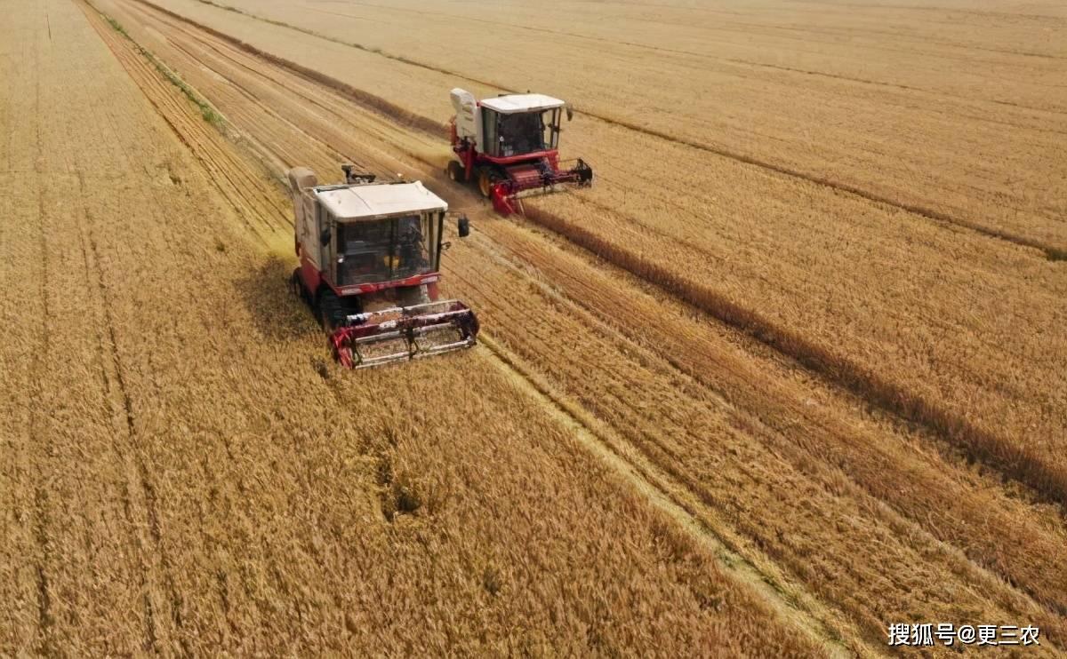 """百年难遇!割麦要用水喷淋,割的不是麦子是""""污染""""?后续来了!"""