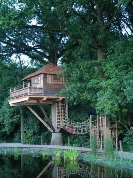 心理学:哪个树屋会让你有安全感,测你心中所想什么时候能够实现