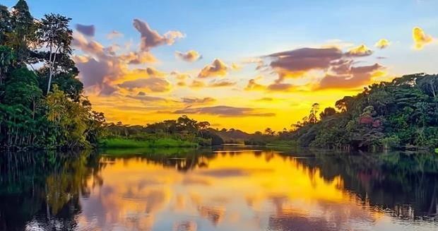 到底在怕什么?为何没人敢在亚马逊河游泳?更没有一座桥敢跨越?