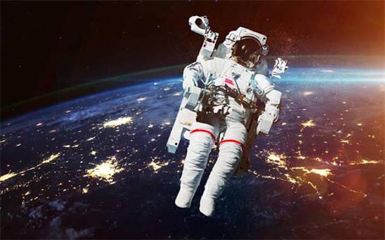 除了人类,还有哪些动物进入过太空