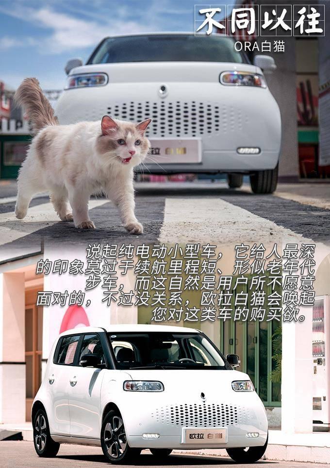白猫武器排行_欧拉白猫2021款,产品力表现更加出众