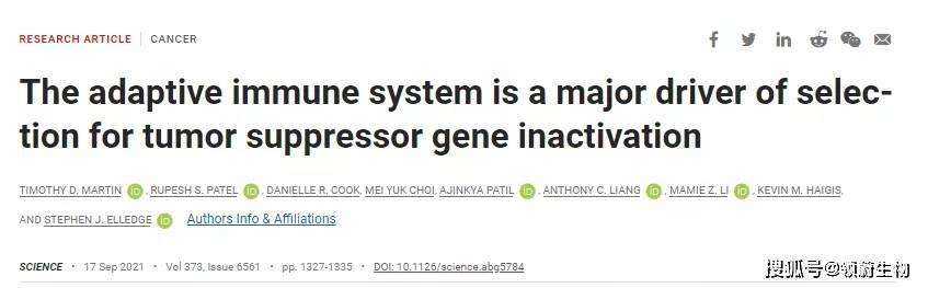 《Science》: 抑癌基因在突变后 癌细胞会利用免疫系统来促进自己生长