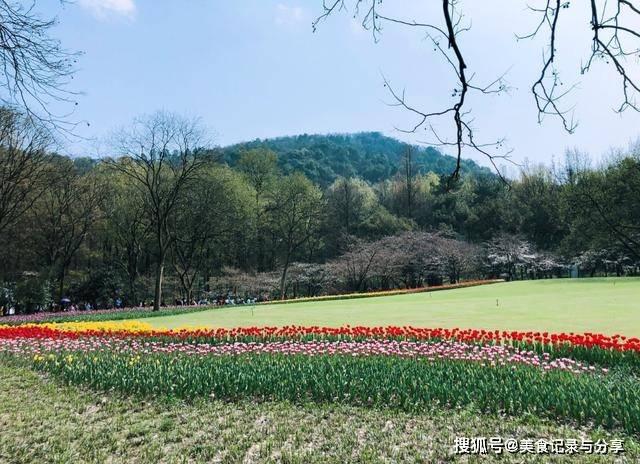 杭州曾有个荔枝峰石刻,可是却消失了一百多年,直到四年前才找到