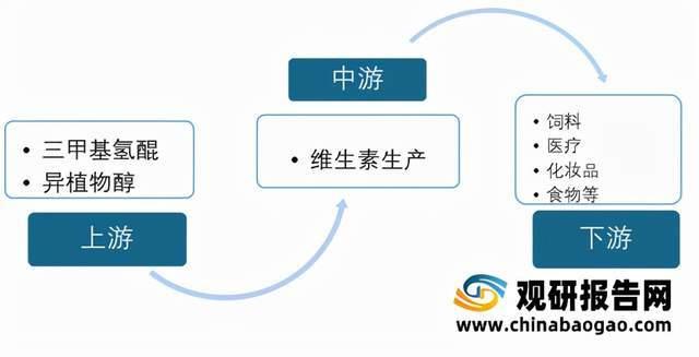 2021年中国维生素E行业分析报告-行业规模与发展趋势预测_我国