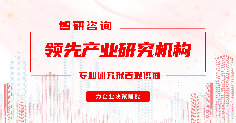 2021-2027年中国菠萝蜜干果市场现状调查与前景趋势研究报告