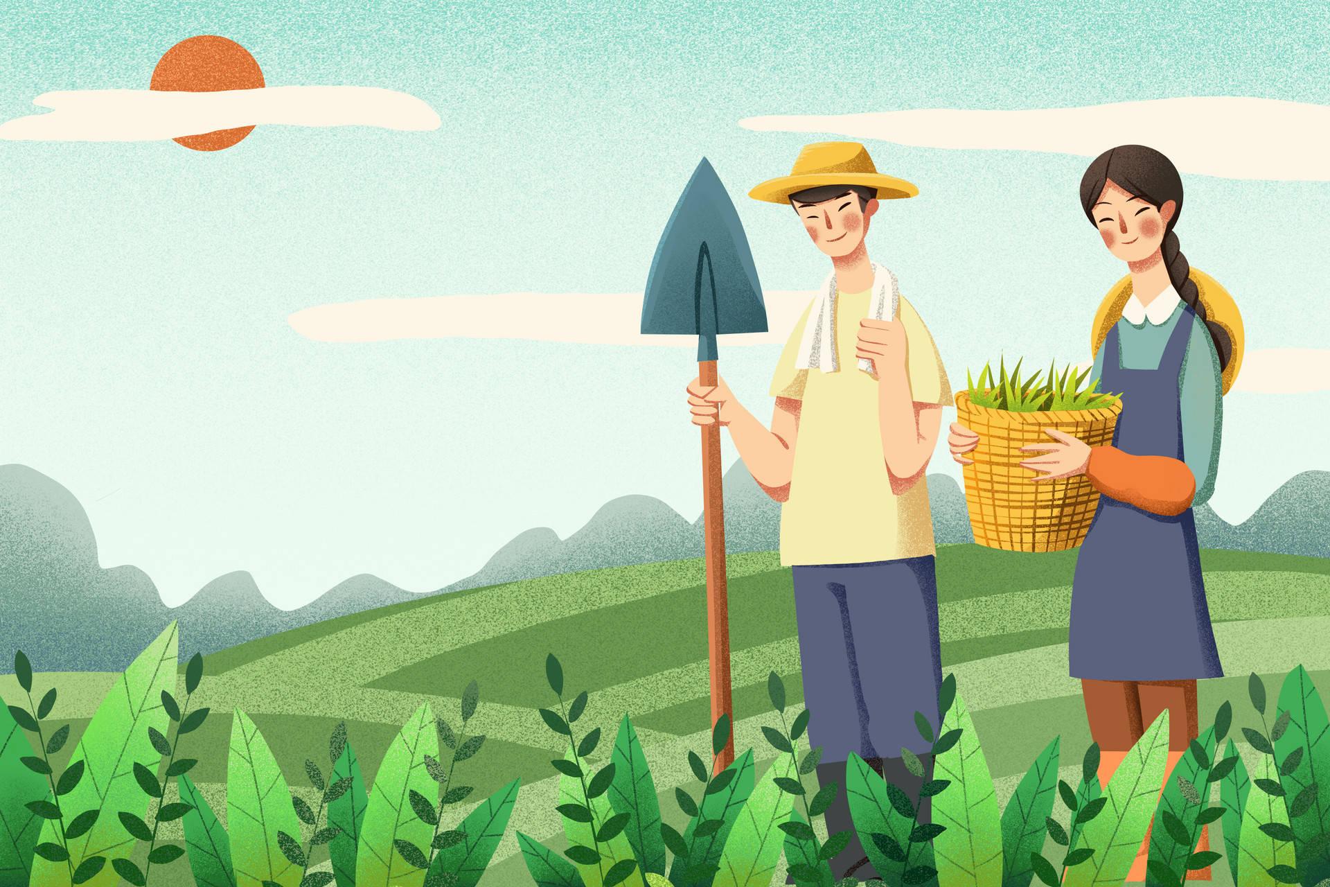 """报告:涉农专业高职生""""学农从农""""意愿增强,农村家庭学生从农比例更高"""
