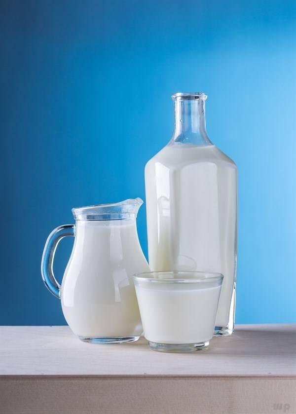 牛奶可以当水喝吗?牛奶饮品是牛奶吗?关于牛奶的真相,你要知道