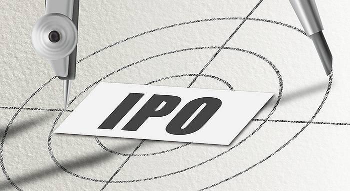 另一家公司的首次公开募股已经暂停,这14家公司将于下周合作