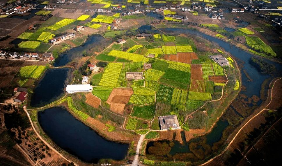 城头山下,一座农耕文化博物珍藏呼之欲出——走近陈柏枝和他的稻作文明文物收藏