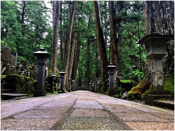 【旅日生活】你体验过日本流行的住寺庙旅行吗?
