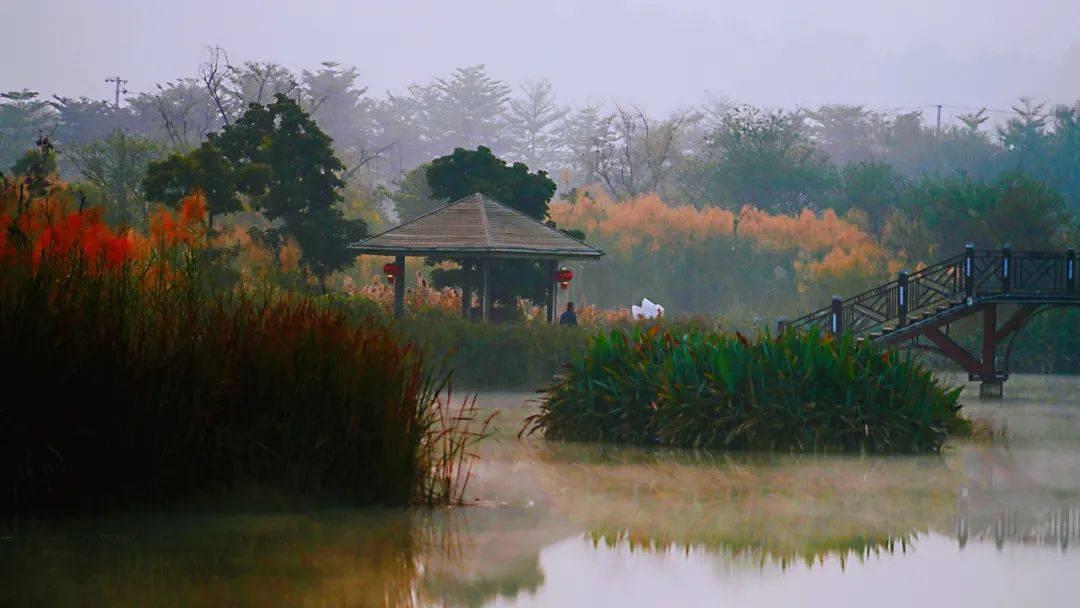 云南这个地方美如画~朦胧婆娑之感,让人仿佛置身仙境!