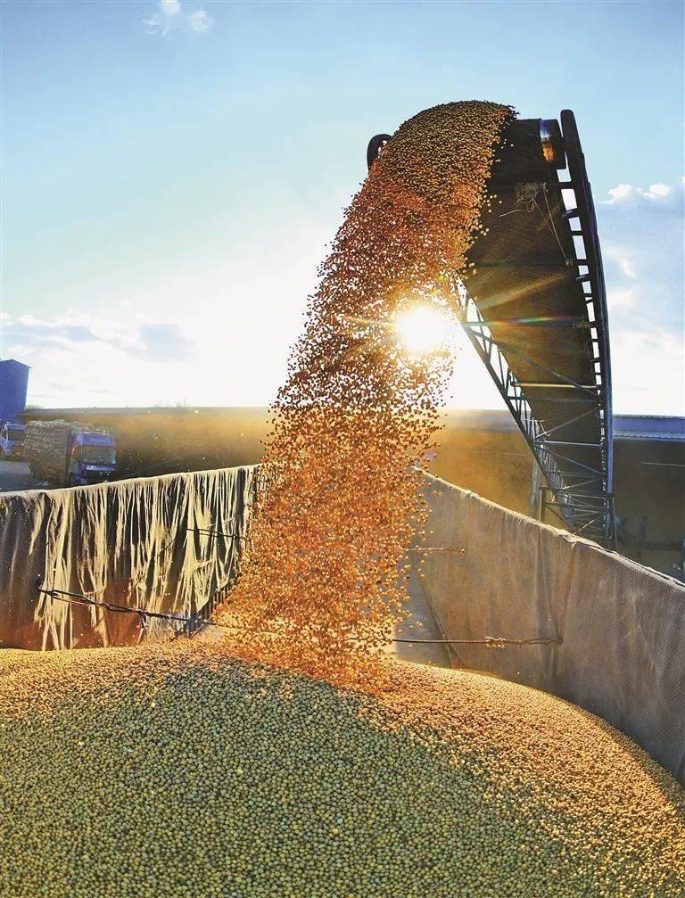 吉林省农业占gdp多少_黑龙江去年GDP增速5.7 ,油煤粮木四大产业负向拉动