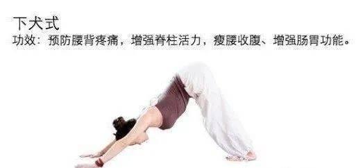 OL怎样快速瘦腿瘦臀 1小时瘦臀瑜伽改善体形