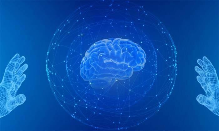 体外大脑类器官培育获突破!不到1年时间,就出现了类似新生儿的基因特征