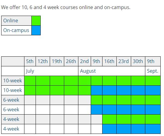 今年,英国语言班还会继续上网课吗?