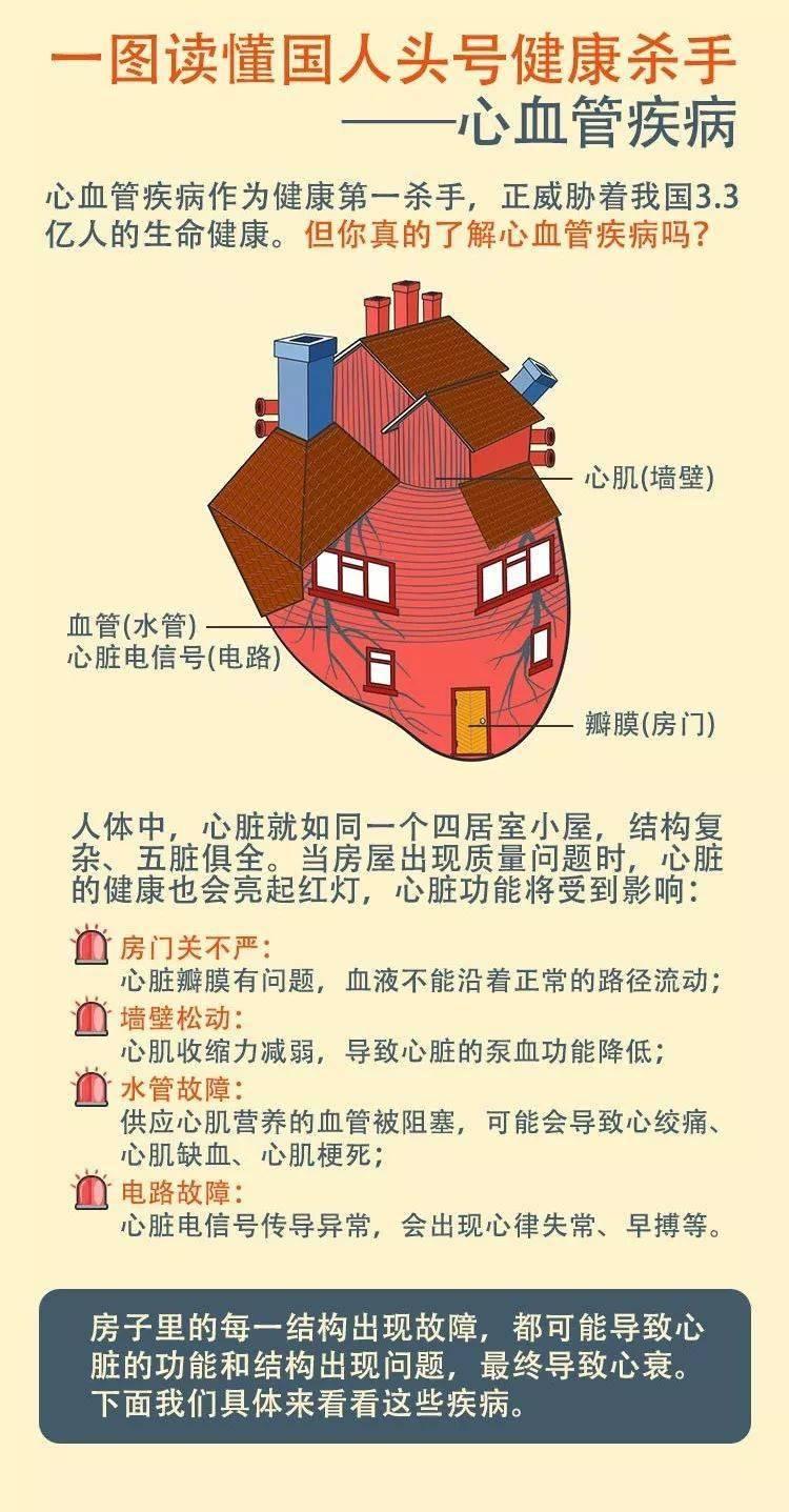 一张图了解中国头号健康杀手:心血管疾病,预防知识都在这里