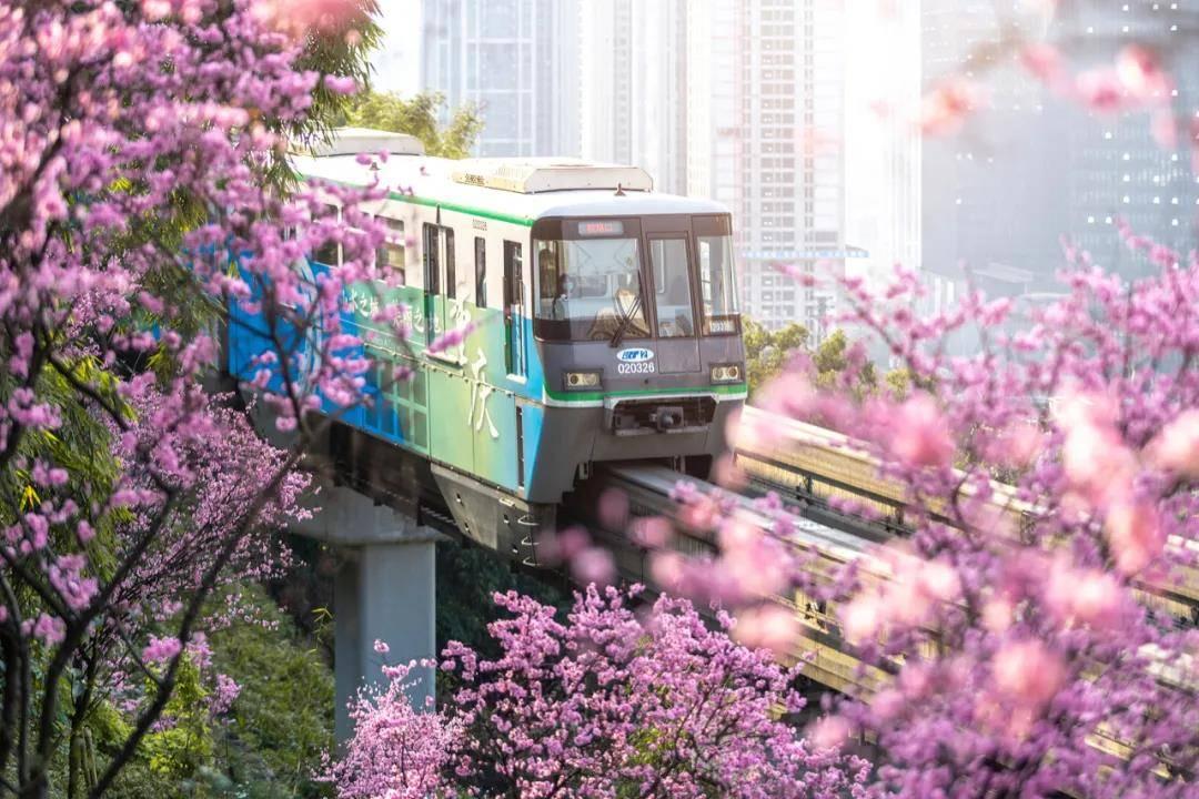 """重庆""""开往春天的列车""""被撞:无人机不是想飞就能飞"""