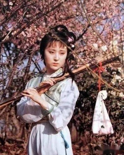 樱花动漫:不同的花有不同的花语,同是芍药,不同的文人从中悟出了不同的道 网络快讯 第5张