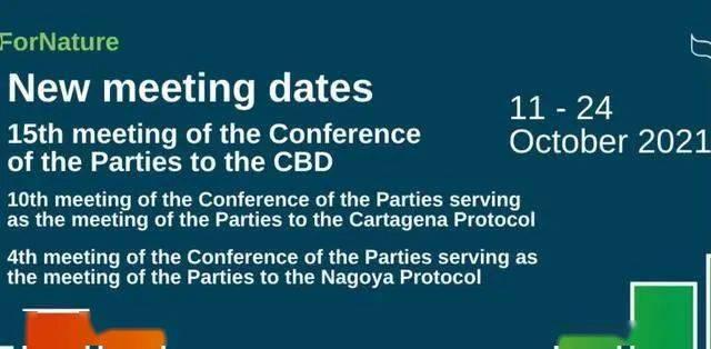期待!《生物多样性公约》COP15将于10月11