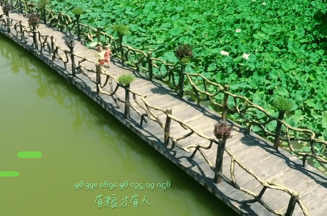 请听听孩子们的歌声,请爱护好我们的青山绿水