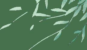 抢先看!《柳州市柳江流域生态环境保护条例(草案)》导读视频发布