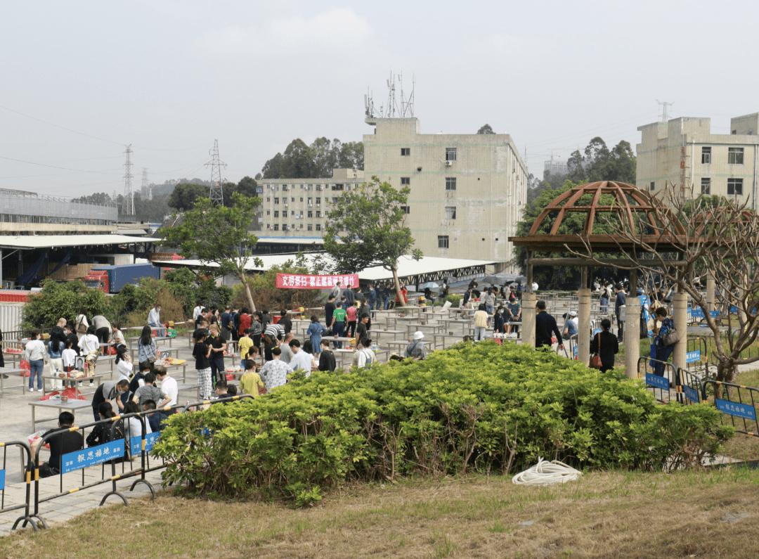 2021年广东省清明假期文化和旅游市场情况