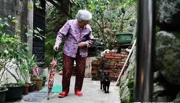 黑猫缓缓跟在阿嬷身旁陪伴散步,这画面看得心都暖了起来!