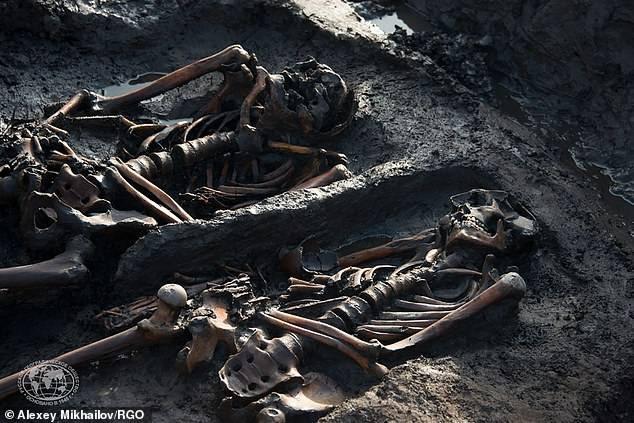 俄国防部长想克隆西伯利亚冻土层中3000年前斯基泰将士?