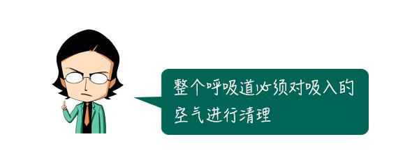 拉菲8直属-首页【1.1.5】