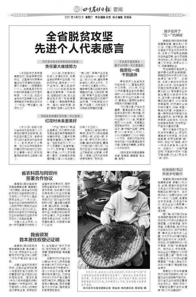村党组织书记共话乡村振兴