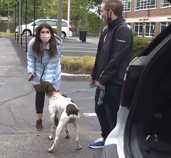美国一记者报道偷狗事件 发现小偷正在遛偷来的狗