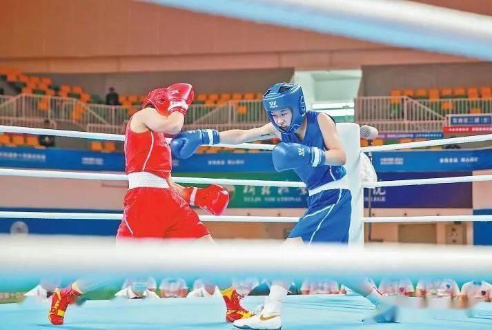 十四运会拳击项目测试赛成功举行