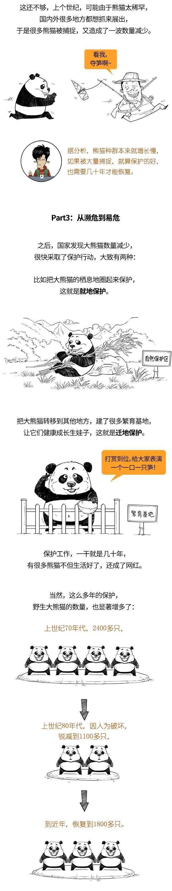 大熊猫被降级了,我可以领养了吗?