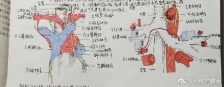 欧洲冠军杯@上海交通大学宣布一批优秀的医学生条记